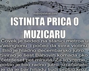poucna istinita  prica o muzicaru